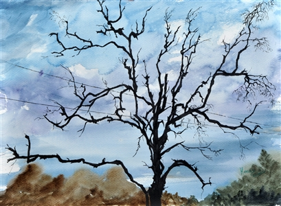 Watercolor painting of a tree by manju srivatsa/ watercolor artist at jaipur, india/ at StudioM/watercolor trees/rich sky in background.